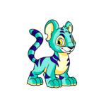 blue kougra