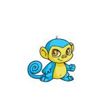 blue mynci