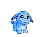 blue poogle