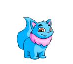 blue wocky